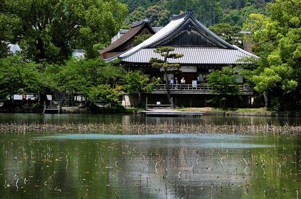 宝塔の地下に納骨堂がある大覚寺と隣接する大沢池=2013年5月、京都市右京区