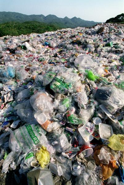やんばるの森にある廃棄物処分場=2002年7月、沖縄県大宜味村、浜田哲二撮影
