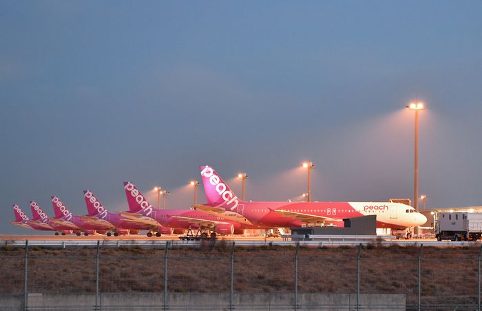 進むLCCと大手航空会社のすみ分け