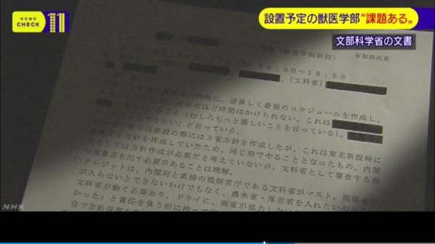 NHKのウェブサイトで「文科省の審議会 新設獣医学部に『課題あり』と報告」というタイトルで5月16日21時32分に公開された動画の1場面のスクリーンショット