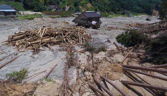 水害と森林開発