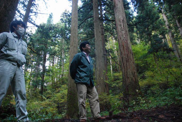 森林環境税の虚実~環境より林業振興?