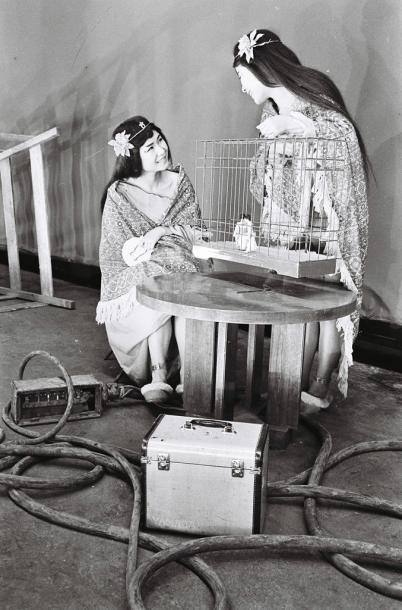 身長153㌢のザ・ピーナッツのふたりを、モデル人形(カゴの中)そっくりの30㌢に見せるため、巨大な鳥かごを作ってふたりが閉じ込められた映像に。映画「大怪獣モスラ」撮影の一コマ