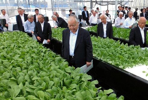 農業と株式会社の相性