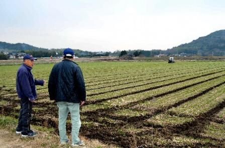 円安と日本の農業